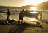 Curso GRATUITO de Pescador Profissional Nível 1