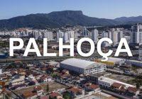 Prefeitura Palhoça inicia emissão online  de credenciais para idosos e PNE