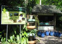 Projeto Família Casca está novamente em atividade em Florianópolis