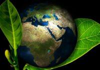 Indústria do Sul defende aplicação do Código Florestal em área de Mata Atlântica